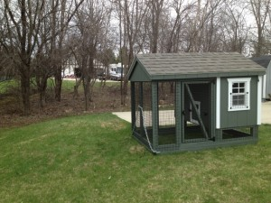 Welcome sheds and stuff for Gazebo chicken coop